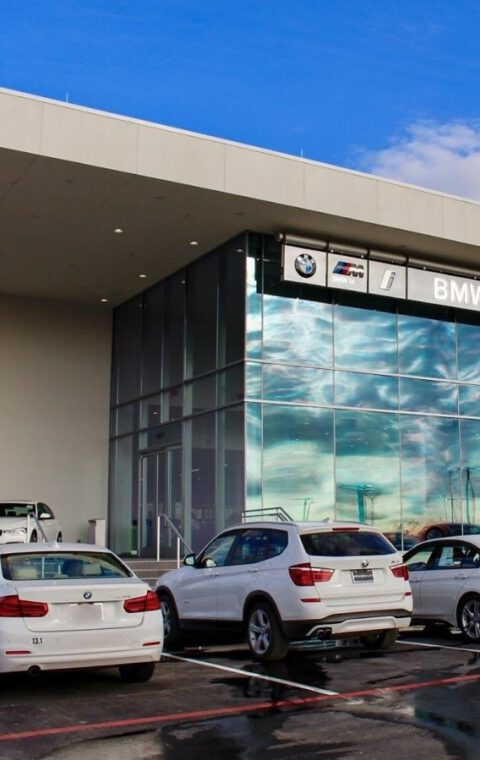 BMW Drives Luxury Consumers